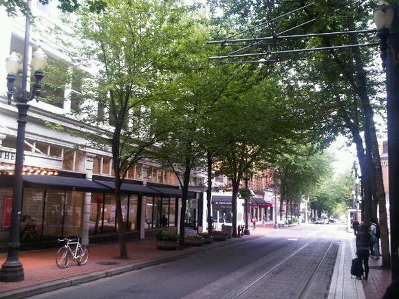 Portland tree lined streets 2010 July.jpg