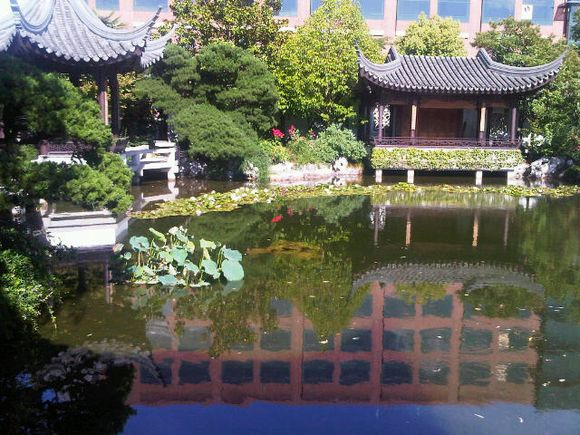Portland Chinese garden view across lake 2010 July.jpg