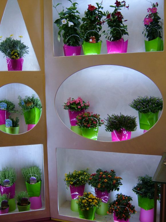2010-09-10 Flormart Padua Italy 015.JPG