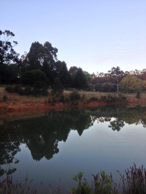 2013-11-10 Dam at dusk